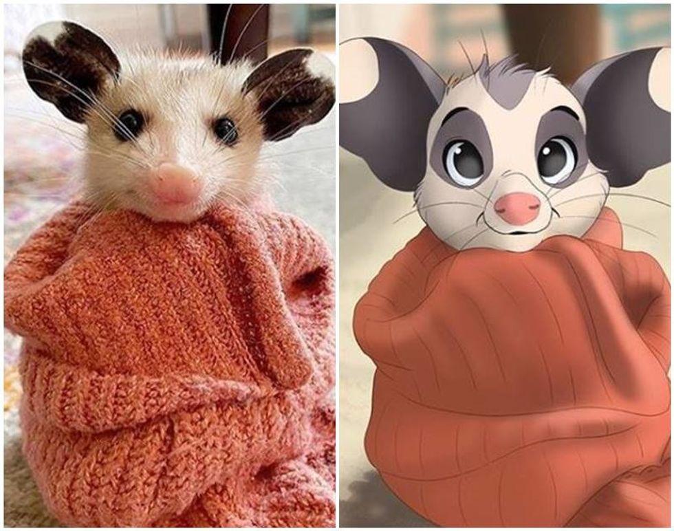 snuggle possum